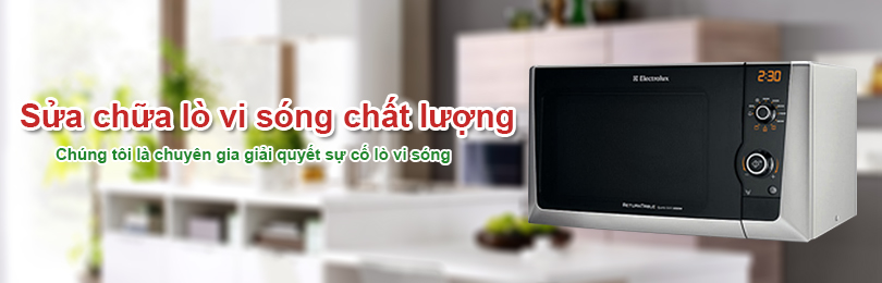 trung tam bao hanh lo viba electrolux tai tphcm